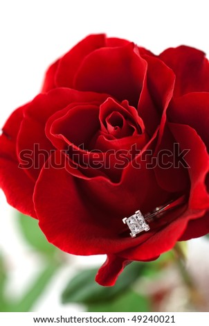 Modern diamond engagement ring embedded in red rose petals - stock photo