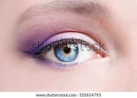 Modern fashion violet makeup of a female eye - macro shot - stock photo