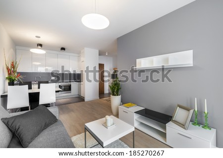 Modern interior design living room and kitchen  - stock photo