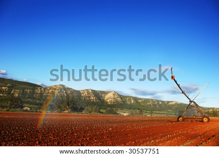 Modern irrigation pivotal system creating a rainbow while watering a cabbage field - stock photo