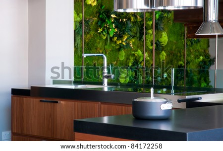 Modern kitchen interior with green plants on background - stock photo