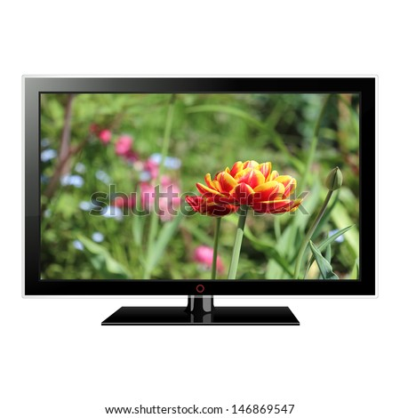 modern LCD monitor isolated on white with flowers in the screen  - stock photo