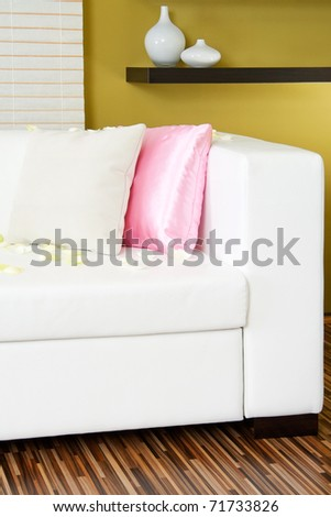Modern living room detail with pillows and rose petals - stock photo