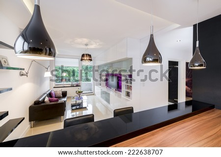 Modern living room with vintage elements in black and white design - stock photo