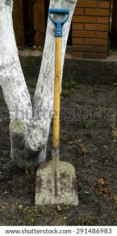 Modern metal shovel spade at the tree on the ground in the garden - stock photo