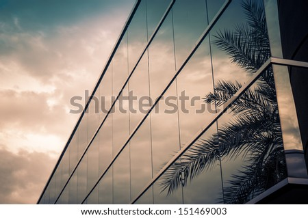 Modern office building with palm tree reflecting in glass - stock photo