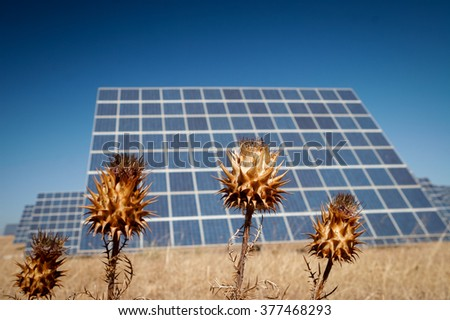Modern sun energy farm solar panels, for eco and nature renewable production. - stock photo