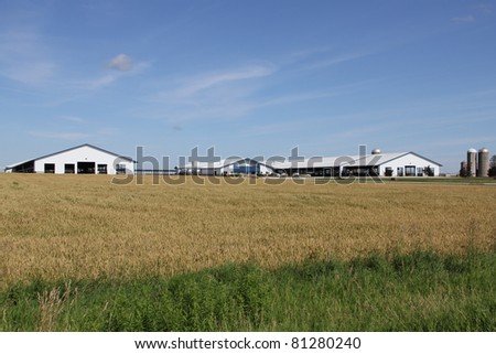 modern wisconsin dairy farm in summer - stock photo