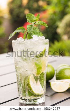 Mojito cocktail in the garden close up - stock photo