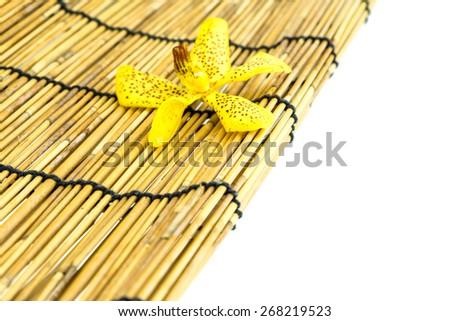 Mokkara yellow Orchid flower on bamboo background - stock photo