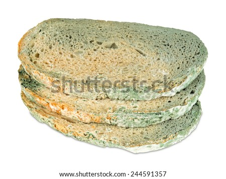 moldy bread slices on white background  - stock photo