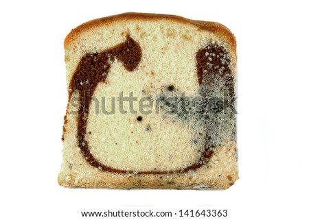 Moldy sliced bread loaf over a white background. - stock photo