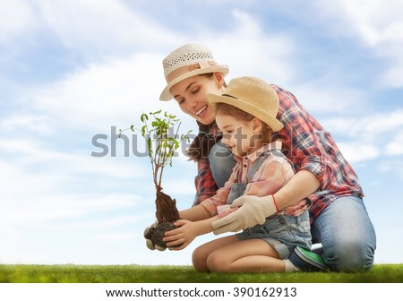 Mom and her child girl plant sapling tree. Spring concept, nature and care. - stock photo
