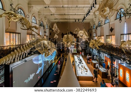 MONACO - JULY 8, 2014: Interior of Oceanographic Museum in Monaco - museum of marine sciences. Oceanographic Museum is home to the Mediterranean Science Commission. - stock photo