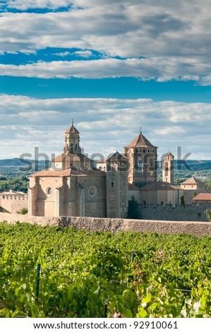 Monastery of Santa Maria de Poblet and vineyards, Catalonia, Spain - stock photo