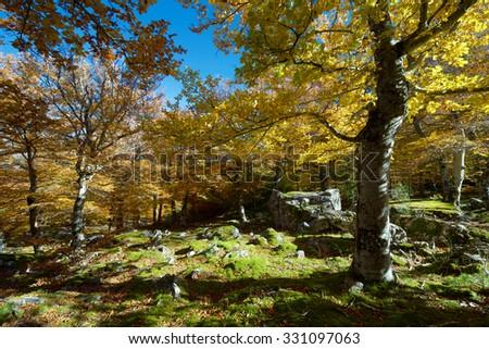 Moncayo Natural Park, Zaragoza, Aragon, Spain - stock photo