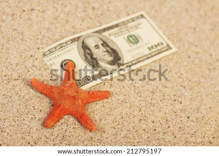 Money american hundred dollar bills in sand and red orange sea aster - stock photo