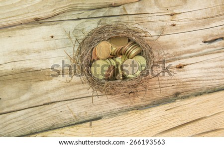 money coin nest - stock photo