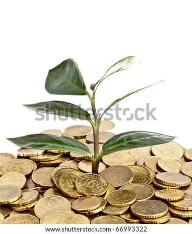 Money Concept - Completely Isolated on White - stock photo