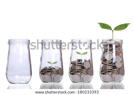 Money growing plant step with deposit coin  in bank concept - stock photo