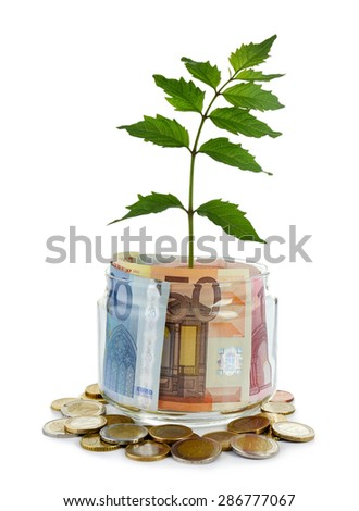 Money in glass jar with plant isolated on white - stock photo
