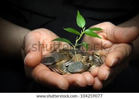 money in hands investment concept - stock photo