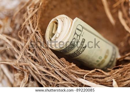 Money Roll representing your retirement nest egg. - stock photo