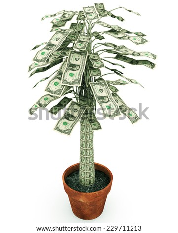 """Money Tree An illustration related to growing wealth or the phrase on frugality """"money doesn't grow on trees"""" as a depiction of a potted money tree.  - stock photo"""