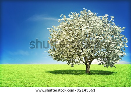 Money tree concept with room for text , or copy space - stock photo