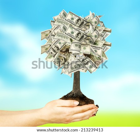 Money tree in female hand on nature background with field and sky - stock photo