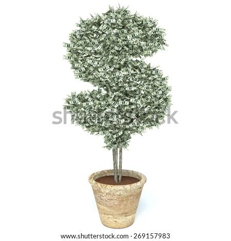 money tree made of hundred dollar bills, isolated on white background - stock photo