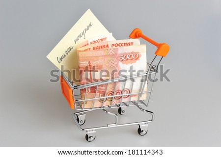 Money with list of purchases in shopping cart on gray background - stock photo