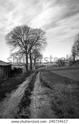Monferrato, countryside winter panorama. Black and white photo - stock photo