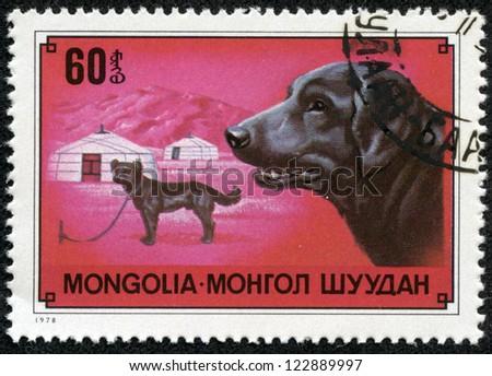 MONGOLIA - CIRCA 1978: A stamp printed in Mongolia shows dog Labrador Retriever, one stamp from series, circa 1978 - stock photo