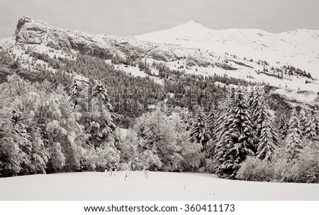 Monochrome winter Alpine landscape - stock photo
