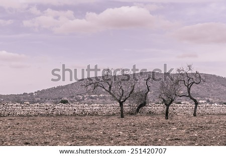 Moody dusty vintage landscape with dancing art nouveau trees, drystone wall, red earth and clouds. - stock photo