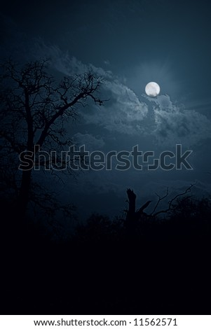 Moon night in forest (collage) - stock photo