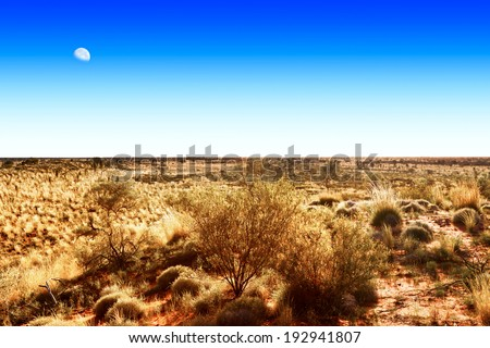 Moon on blue sky over Australian outback - stock photo