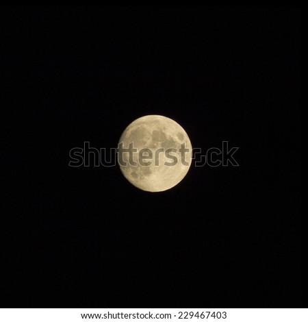 moon on the white background - stock photo