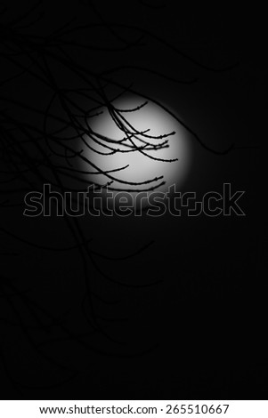 Moon Shadow - Natural Background and Texture - Abstract Art of the Mystic Planet - stock photo