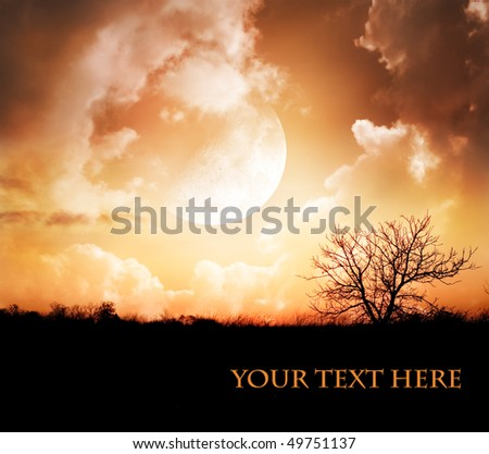 Moonlight night - stock photo