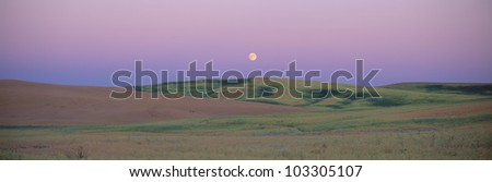 Moonrise over pea fields, the Palouse, Washington State - stock photo