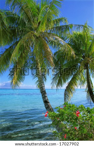 Moorea - stock photo