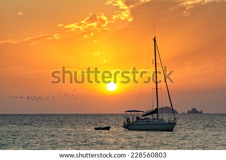 Moored sailboat at the coast of Ibiza in sunset, flock of seagulls passing by - stock photo