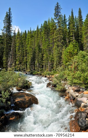 Moraine Lake Canadian Alpine Stream Vertical - stock photo