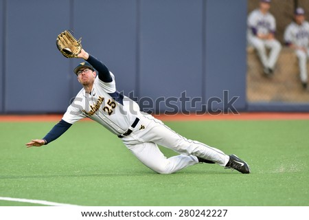 MORGANTOWN, WV - MAY 1: West Virginia outfielder Brad Johnson (25) makes a diving catch during a Big 12 conference baseball game May 1, 2015 in Morgantown, WV.  - stock photo