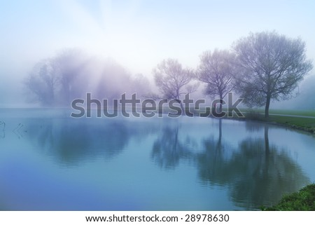Morning by spring - stock photo