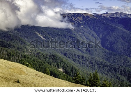 Morning clouds roll across forested mountainside near the Hurricane Ridge Visitor Center in Olympic National Park, Washington, USA, with subalpine meadowland in foreground - stock photo