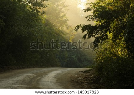 morning country road - stock photo
