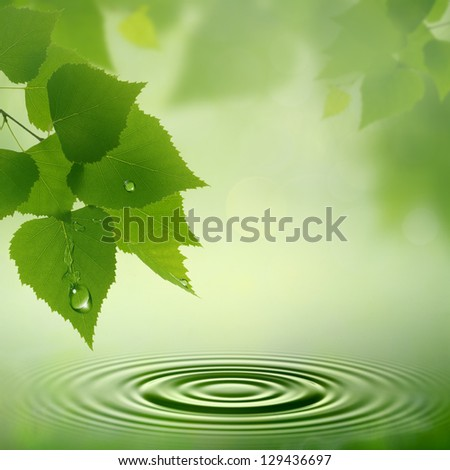 Morning dew. Abstract natural backgrounds for your design - stock photo